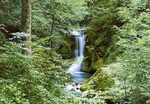 FOTOTAPET WATERFALL IN SPRING - FOTOTAPET WATERFALL IN SPRING
